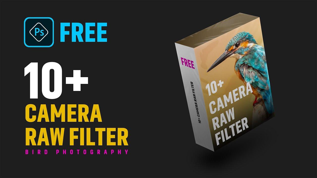 [free] Bird photo editing preset - photoshop tutorial