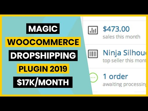 $17k/Month Best Woocommerce Dropshipping Plugin 2020
