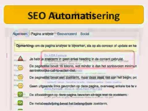 SEO Tips: Google Panda, Pinguin en andere Website Tips
