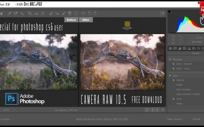 how to the install Adobe Camera Raw 10.5 fix error Photoshop tutorial