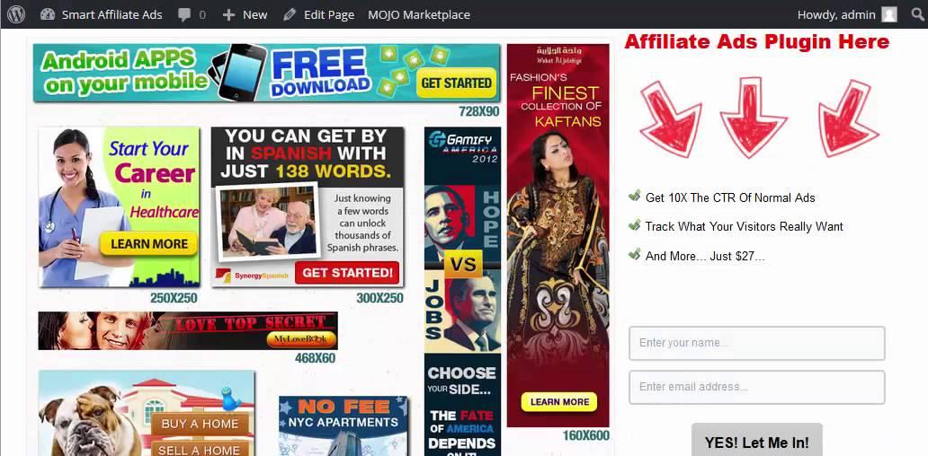 Put Ads On Your Wordpress Blog   Free Plugin