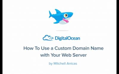 Do It Yourself – Tutorials – How To Use a Custom Domain Name with Your Web Server