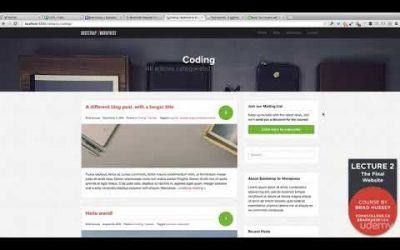 Do It Yourself – Tutorials – lecture 2: The Beautiful Final WordPress Website / Theme You Are Going To Build In This Course