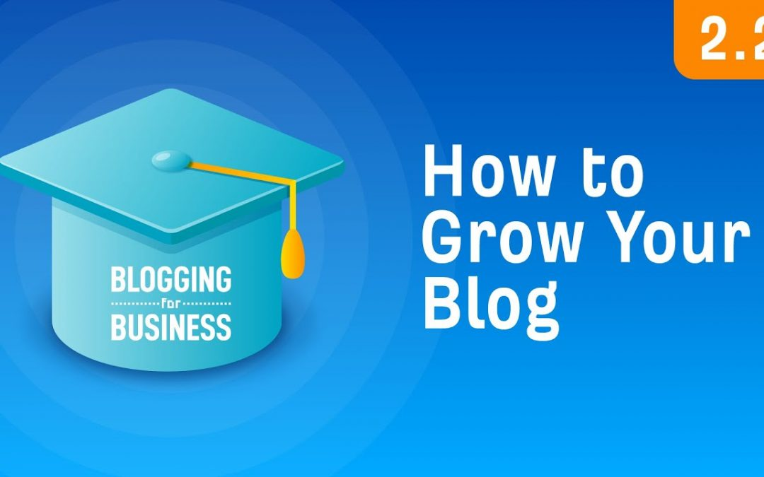 search engine optimization tips – How to Grow Your Blog: Two Strategies That Work [2.2]