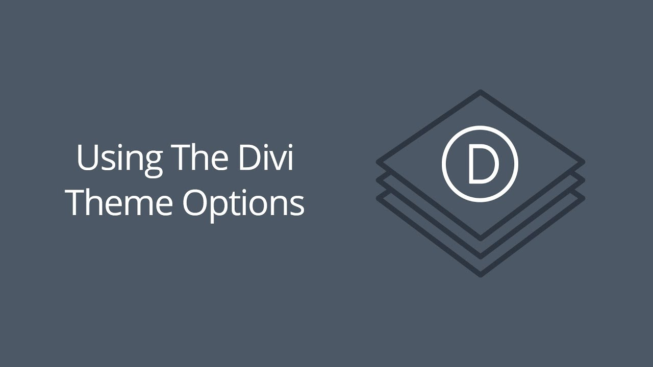 Using The Divi Theme Options