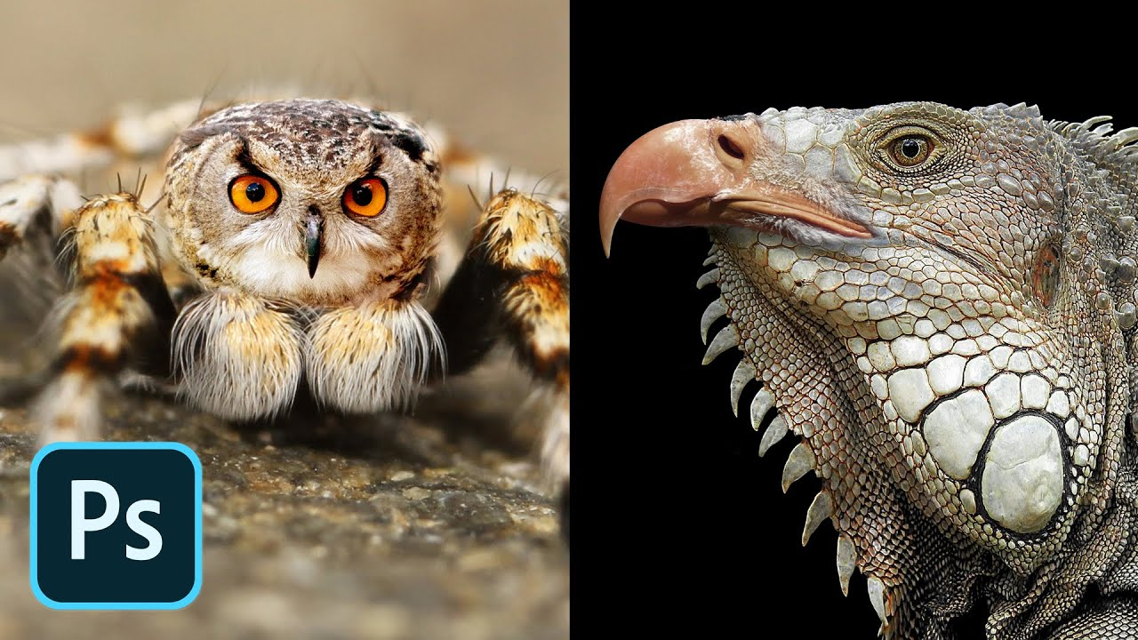 Learn how to create animal hybrids in this Photoshop tutorial!