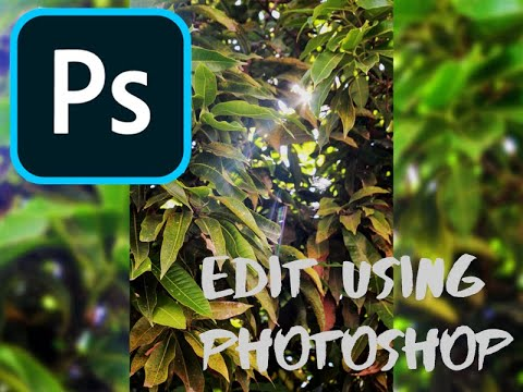 How to edit a picture using Adobe Photoshop CC 2019