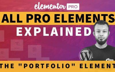 Do It Yourself – Tutorials – Portfolio Widget Tutorial | Elementor Pro Tutorial