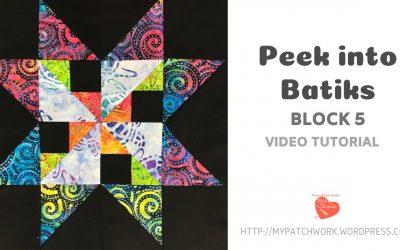 WordPress For Beginners – Block 5 Peek into Batiks video tutorial