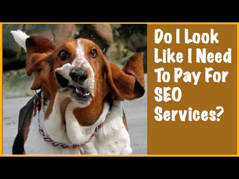 Do You Need SEO Services To Win At Search Engine Optimization