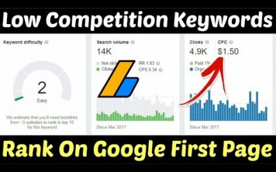 search engine optimization tips – Low Competition Keywords For Micro Niche Blog | High CPC Low Competition Keywords | Micro Niche Blog