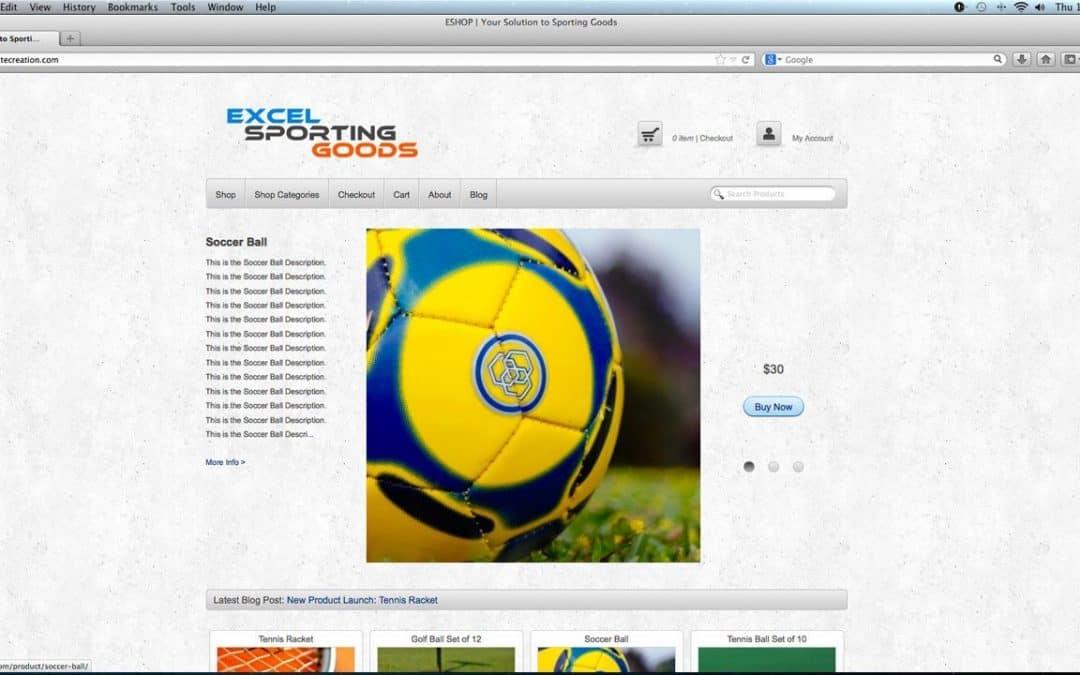 How to Make a Custom ECOMMERCE Website With WordPress - BEGINNERS