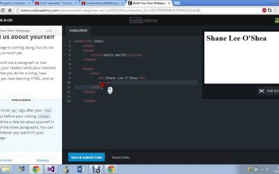 """Do It Yourself – Tutorials – Codecademy: """"Build your own webpage"""" full tutorial."""