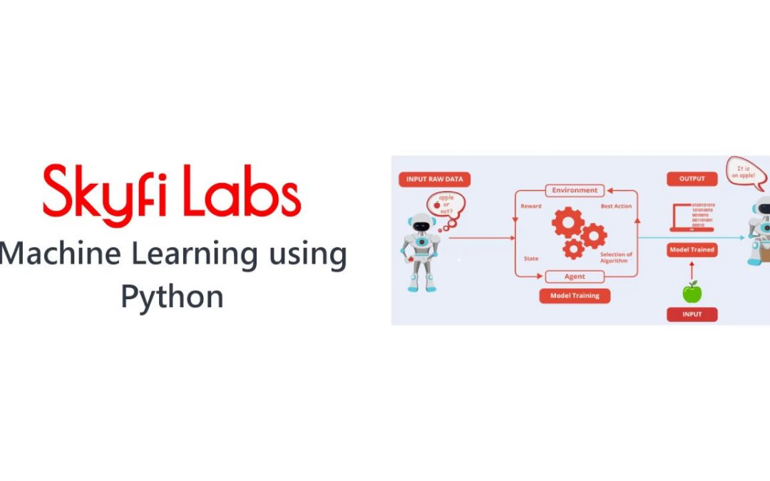 Develop a Machine Learning Project using Python - Skyfi Labs Online Course