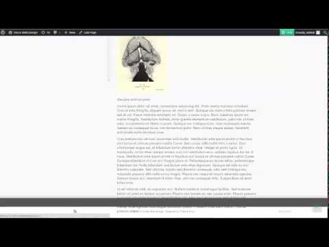 Ultimate Product Catalog Plugin - Video 8 - Custom CSS