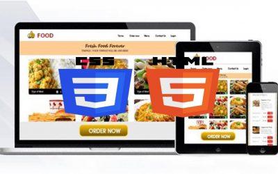 Do It Yourself – Tutorials – Build A Responsive Website   HTML5 & CSS3 Tutorial – Jonas Schmedtmann