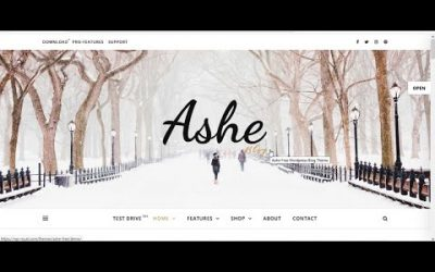 Do It Yourself – Tutorials – How to Make a Professional WordPress Blog Website with Free Theme Step by Tutorial [For Beginners]
