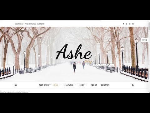 How to Make a Professional WordPress Blog Website with Free Theme Step by Tutorial [For Beginners]