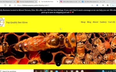 Do It Yourself – Tutorials – (Lesson #3) How to create ETSY website STEP BY STEP Tutorial (Making Shop Look Nice)