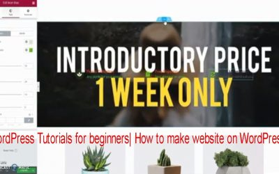 Do It Yourself – Tutorials – wordpress tutorial for beginners 2020 – how to create your first wordpress website