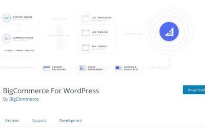 Amber POS and Woocommerce & WordPress