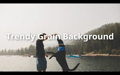 Do It Yourself – Tutorials – How To Add A Trendy Grain Effect To Any Website Background (Grained.js | WordPress Tutorial)