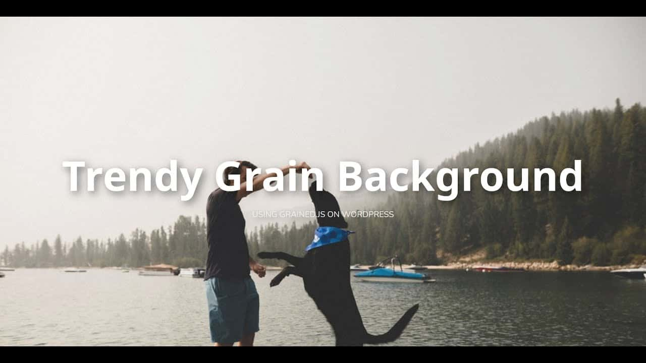 How To Add A Trendy Grain Effect To Any Website Background (Grained.js | WordPress Tutorial)
