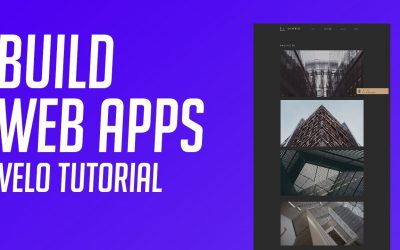 Do It Yourself – Tutorials – How to Build Professional Web Apps – Step by Step Velo Tutorial