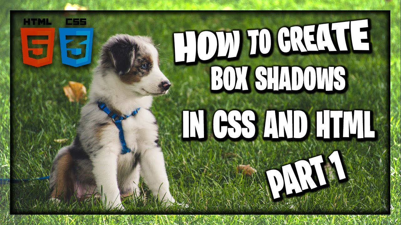 How To Create Box Shadows In CSS and HTML Part 1 | HTML and CSS Tutorial