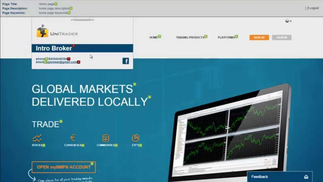Forex introducing broker tutorial, how to setup your own website inside BMFN cabinet