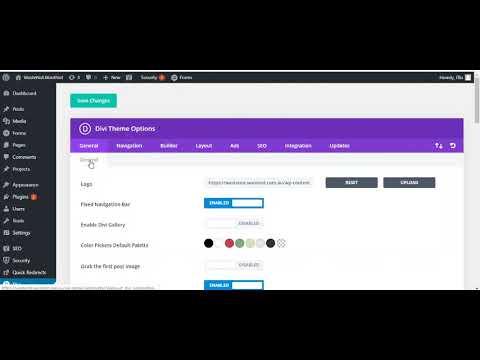 Where to apply Custom CSS to Divi website - Divi Theme Options