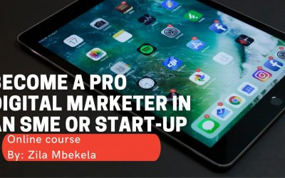 Do It Yourself – Tutorials – Web Design Demo video: Chapter 1: Become a Pro Digital Marketer in an SME or Start-up