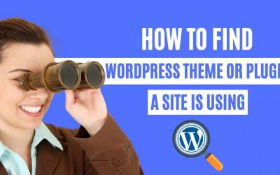 WordPress For Beginners – How to find which WordPress Theme or Plugin a site is using