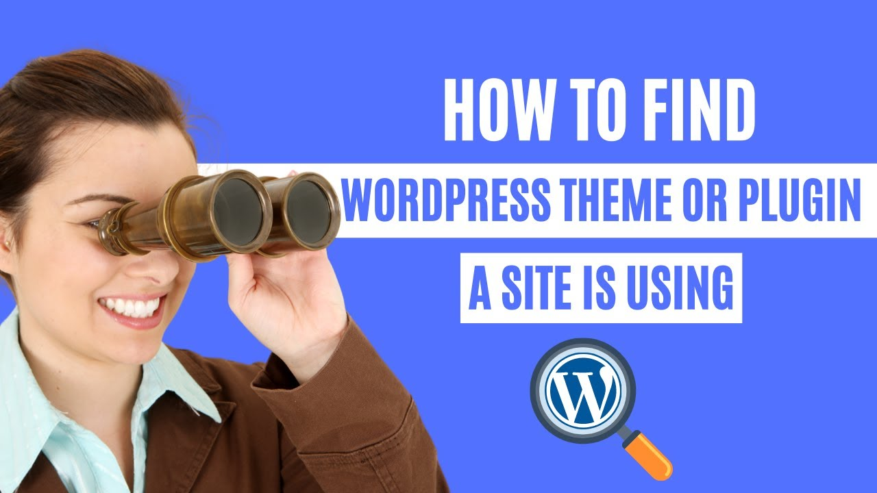 How to find which WordPress Theme or Plugin a site is using