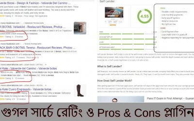 WordPress For Beginners – Review Snippet | Pros and Cons Plugin WordPress Bangla Tutorial