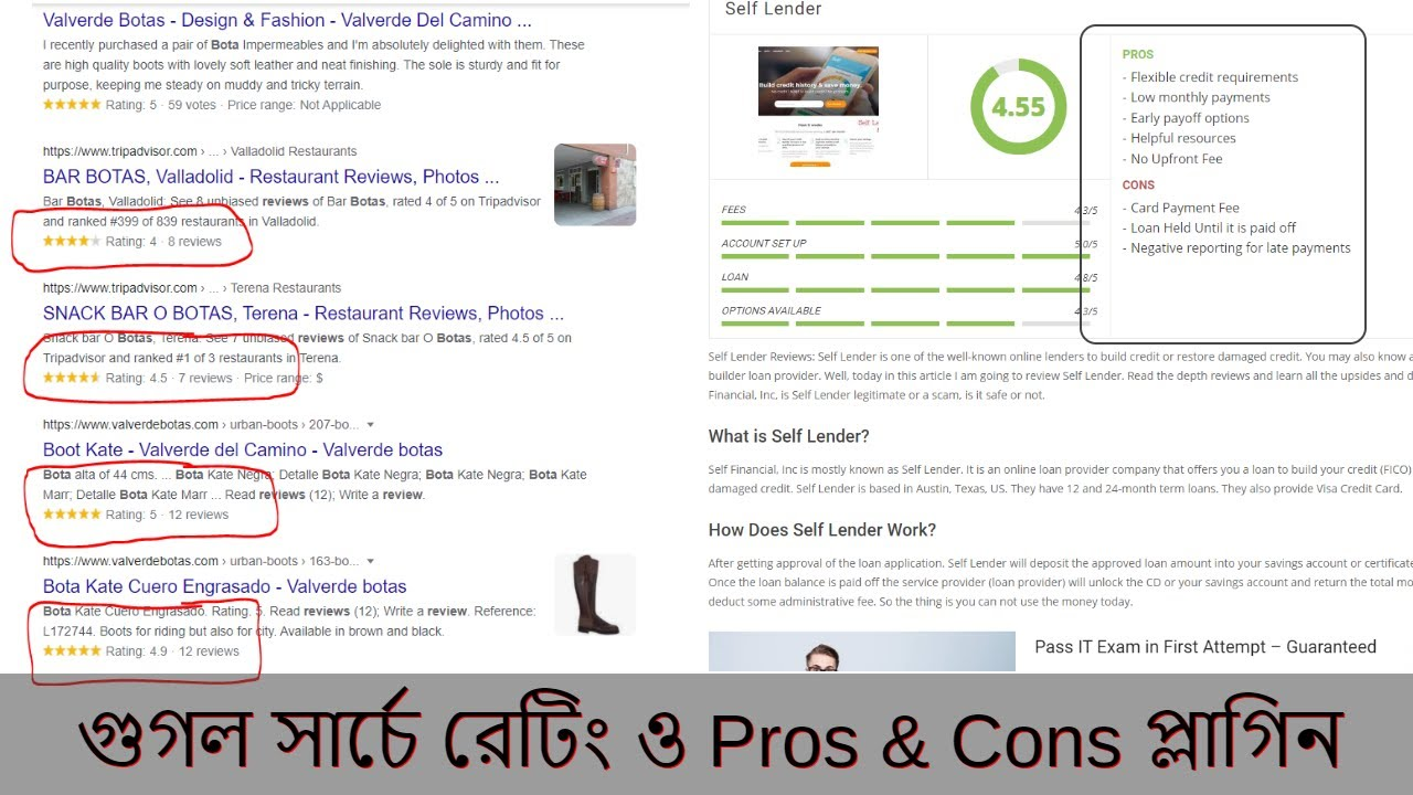 Review Snippet | Pros and Cons Plugin WordPress Bangla Tutorial