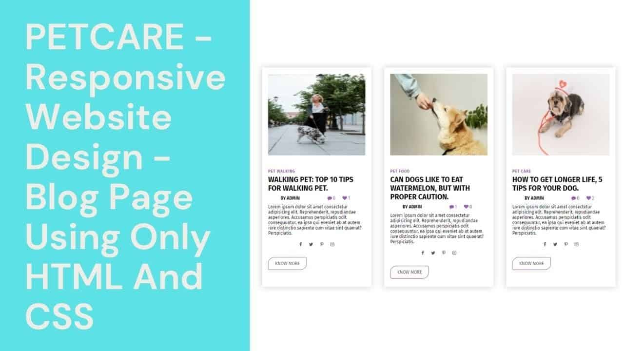 PetCare - Responsive Website Design - Blog Page Using Only HTML And CSS    WebMode