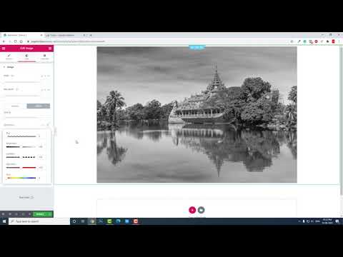 Elementor Image Mode Transition on Hover from Blackwhite to Color   CSS Filters