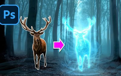 Do It Yourself – Tutorials – Create Your Own Physical Patronus As Seen In The Harry Potter Movies