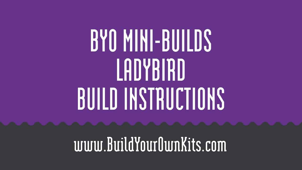 Ladybird Instructions | Build Your Own Mini-Builds