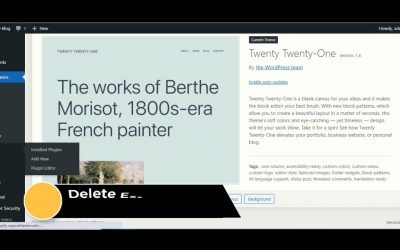 WordPress For Beginners – Before Installing The Theme    Watch This    How To WordPress