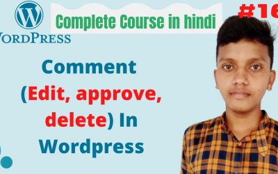 WordPress For Beginners – Comment (Edit, approve, delete) In WordPress   wordpress tutorial for beginners in hindi #16
